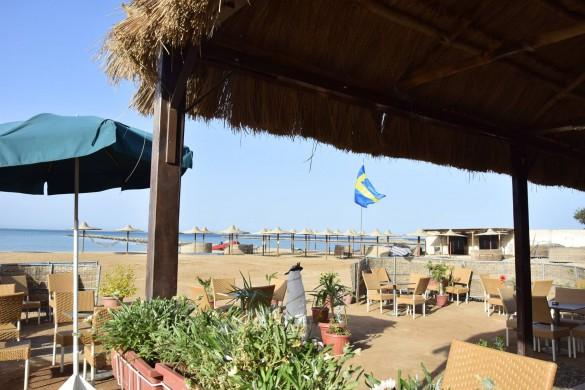 Nu har den svenska flaggan hissats i svensk-kolonin Turtles Beach Resort Hurghada!